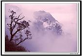 LKK的傳統相片:杉林溪頂0542.jpg