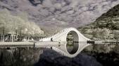 紅外線試拍:2015-1-25-內湖大湖公園29.jpg