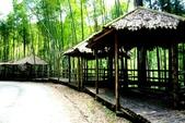 台灣中部景點攝影之旅:雲林五元二角綠廊11.jpg