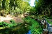 台灣中部景點攝影之旅:雲林五元二角綠廊29-.jpg