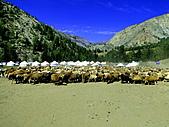 金秋北疆:04可可托海景區209.JPG