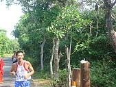981115桃園全國馬拉松:DSC07864.JPG