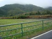 990217開車環島第二天台東關山:DSC09137.JPG