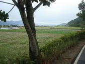 990217開車環島第二天台東關山:DSC09139.JPG