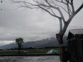990217開車環島第二天台東關山:DSC01529.JPG