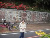 990217開車環島第二天台東關山:DSC01437.JPG