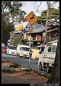 2009京都賞楓之旅-Day3 :006_IMG_6042.jpg
