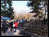 2009京都賞楓之旅-Day3 :009_R0011594.jpg