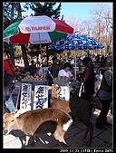 2009京都賞楓之旅-Day3 :010_R0011593.jpg