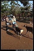 2009京都賞楓之旅-Day3 :014_IMG_6050.jpg
