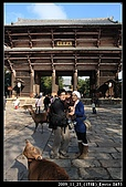 2009京都賞楓之旅-Day3 :020_IMG_6101.jpg