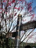 台北的郊山-2:白石湖路牌