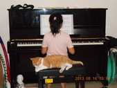 氣質貓咪~~~:我可有監督之則唷.......