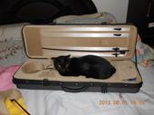 氣質貓咪~~~:這是我的工作項目之一....