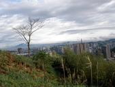 台北的郊山-2:遠山含笑