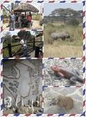東南非 East & South Africa:國家公園管理處
