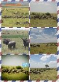 東南非 East & South Africa:小組會議