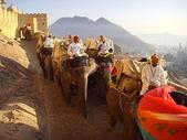 印度全覽:捷布-安珀堡