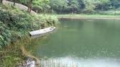 福州山公園步道:P_20170512_155704.jpg