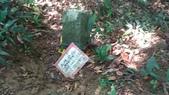 東勢格古道:P_20200712_081740.jpg