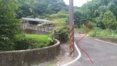 東勢格古道:P_20200710_145544.jpg