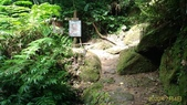 東勢格古道:P_20200704_093534.jpg