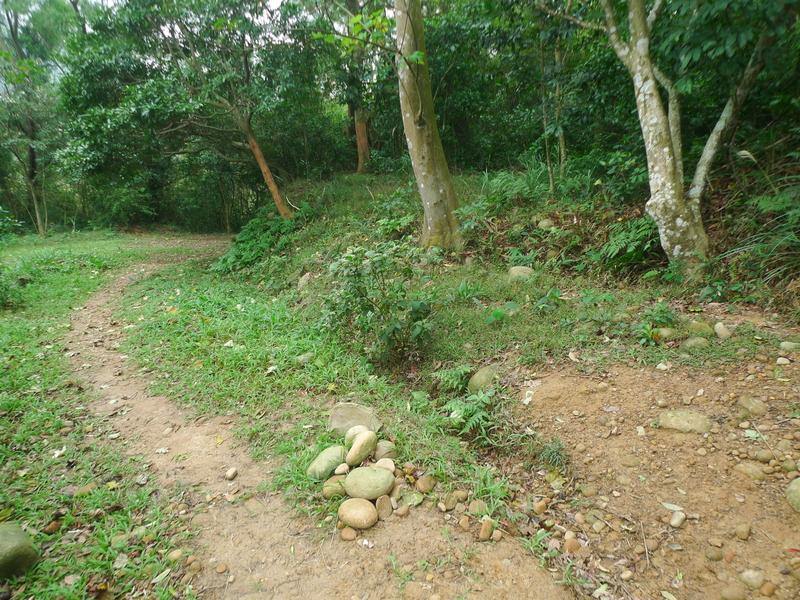 福人登山步道(桃園楊梅):P1260116.JPG