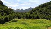 東勢格古道:P_20200704_105956.jpg