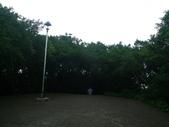 桃園市桃園區:P1250923.JPG