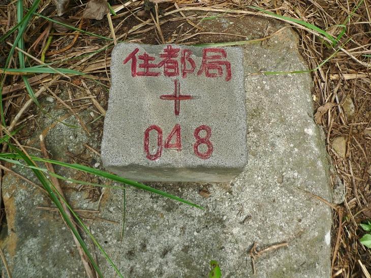 桃園市桃園區:P1250937.JPG