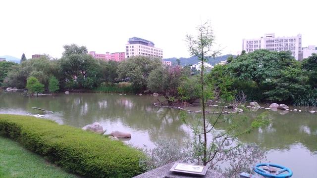福州山公園步道:P_20170512_100206.jpg