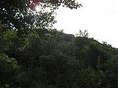 20081102虎頭山:CIMG4385.JPG
