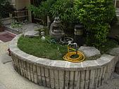 2009夏香草風情-花園篇:CIMG7007.JPG