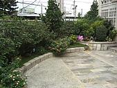 2009夏香草風情-花園篇:CIMG6994.JPG