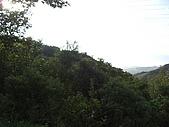 20081102虎頭山:CIMG4386.JPG
