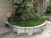 2009夏香草風情-花園篇:CIMG7001.JPG