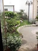 20081004香草植物:DSC03779.JPG