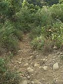 20081102虎頭山:CIMG4389.JPG