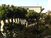 20081221香草別墅:CIMG4788.JPG
