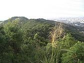 20081102虎頭山:CIMG4388.JPG