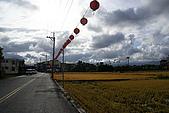 台灣隨拍:DSC05560.jpg