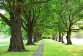 20150207紐西蘭自助-基督城:紐西蘭-基督城01.jpg