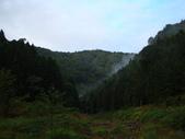 100.10.10 水漾森林:水漾森林 007.jpg